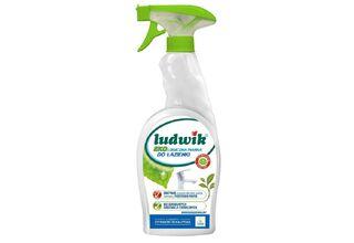 Środki czystości - Ludwik